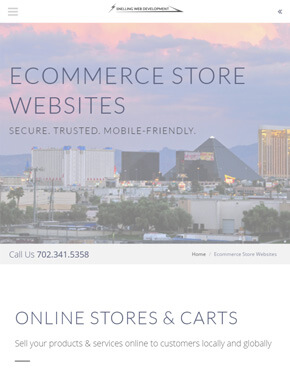 Mobile-optimized website page